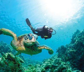 scuba diving in Bùzios